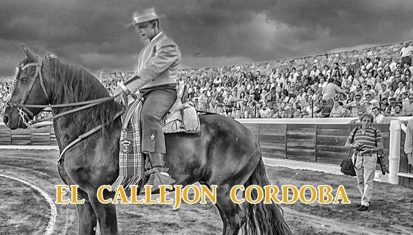 EL CALLEJON CORDOBA