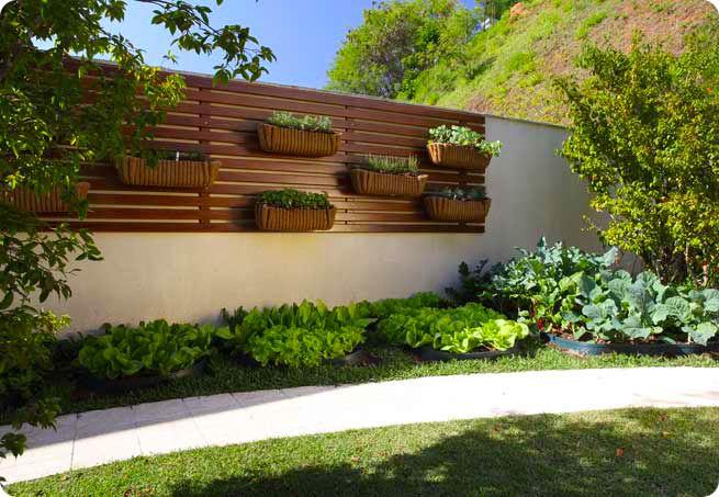 horta jardim vertical:Jardim De Casa