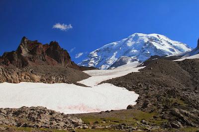 View Looking Up Flett Glacier Toward Mount Rainier with Echo Rock