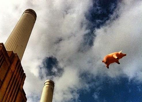 Flying+pig.jpg