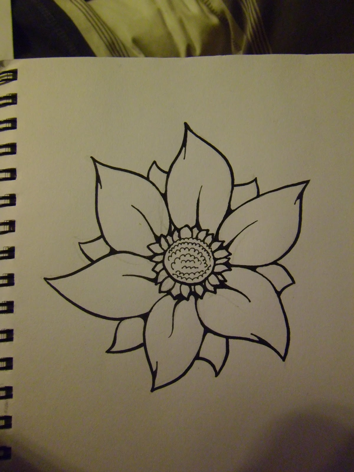 Drawing Scribble Flower : Daryl hobson artwork how to draw a flower step by