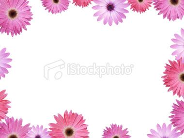 Violet Flower Picture on Frames   Frames For Collage Design   Picture Frames    Wallpaper66