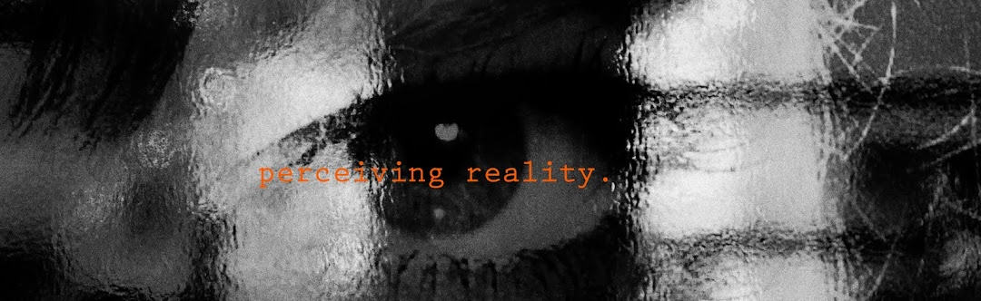 perceiving reality