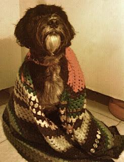 Perro con manta de abuela hecha a ganchillo