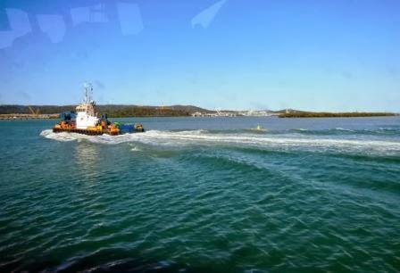 Curtis Island Ferry Tour