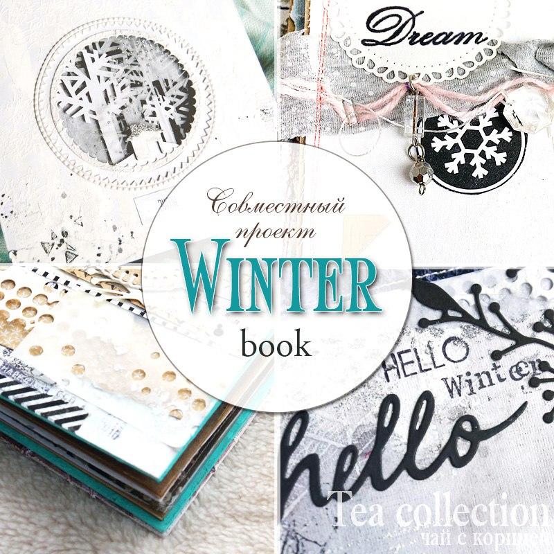ССП WinterBook. Первый этап.