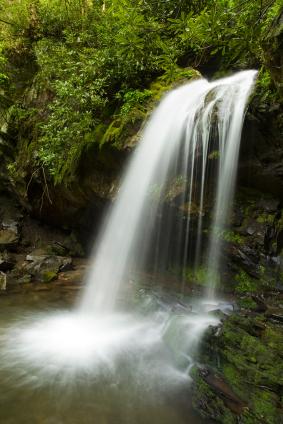 Roaring fork motor nature trail hiking guide for Motor trails in gatlinburg tn
