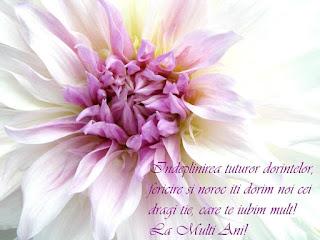 felicitari, urari, mesaje, trandafiri rosii, flori, happy birthday, la multi ani, felicitari virtuale, felicitari de aniversare, felicitare de zi de nastere, felicitare de zi onomastica, felicitare de ziua numelui, poze, imagini, fotografii, buchet de flori, buchet de trandafiri,