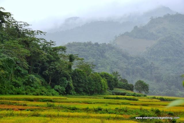 Village Trung Đô, Bảo Nhai - Photo An Bui