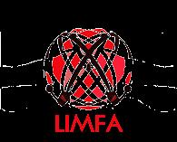 Grupa LIMFA