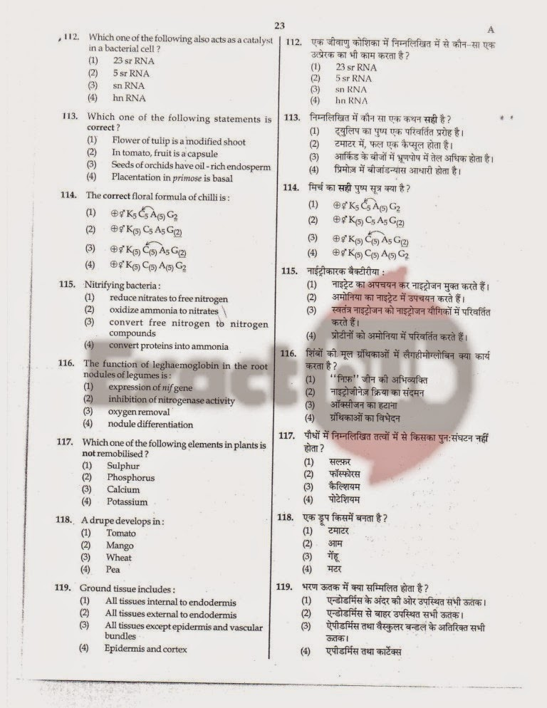 AIPMT 2011 Exam Question Paper Page 22
