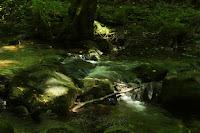 Olšinka/The Olšinka River