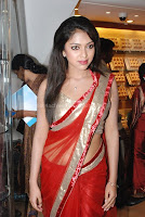Amala, paul, hot, navel, in, transparent, saree