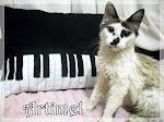 Mimos Musicais