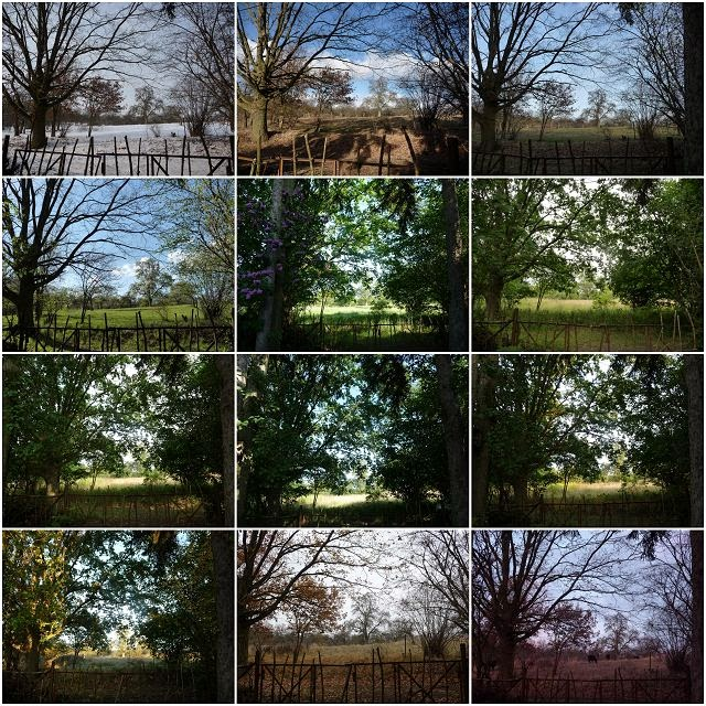 Fotoprojekt 12tel Blick 2014