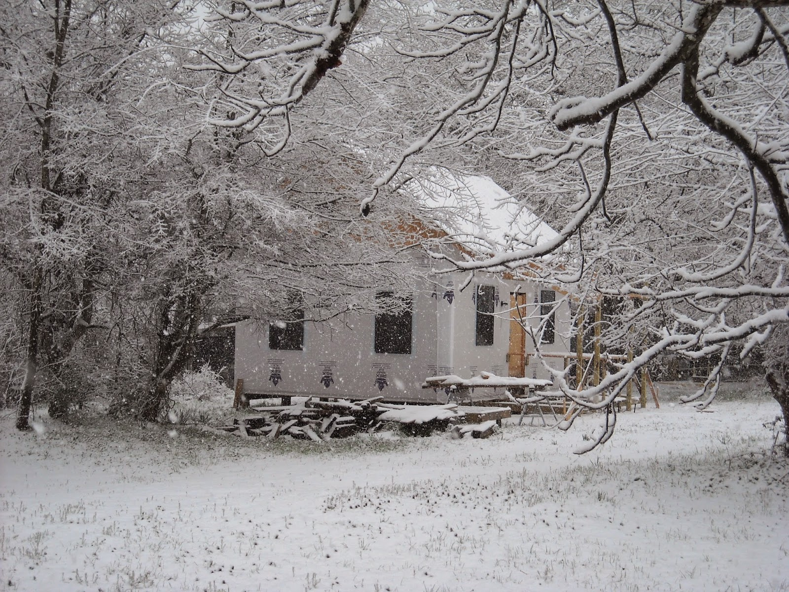 http://rockingchairwriter.blogspot.com/2015/03/when-they-say-when-texas-freezes-overor.html