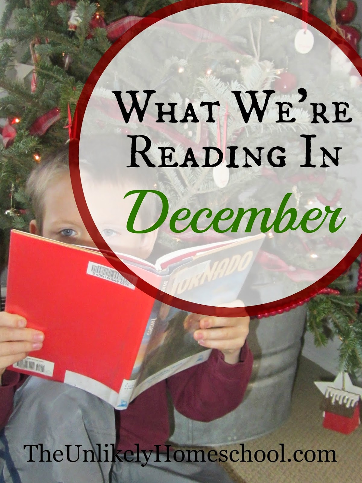 What We're Reading in December (Book selections for a homeschooling family of 7)