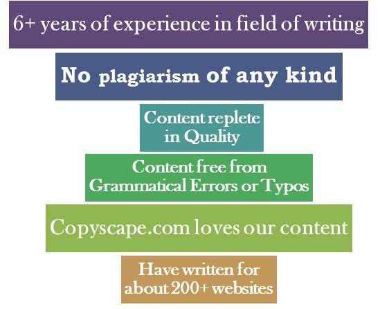Website for essays