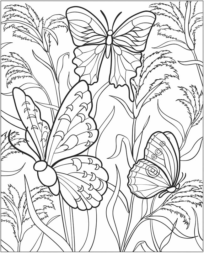 colorama coloring pages colored - photo#7