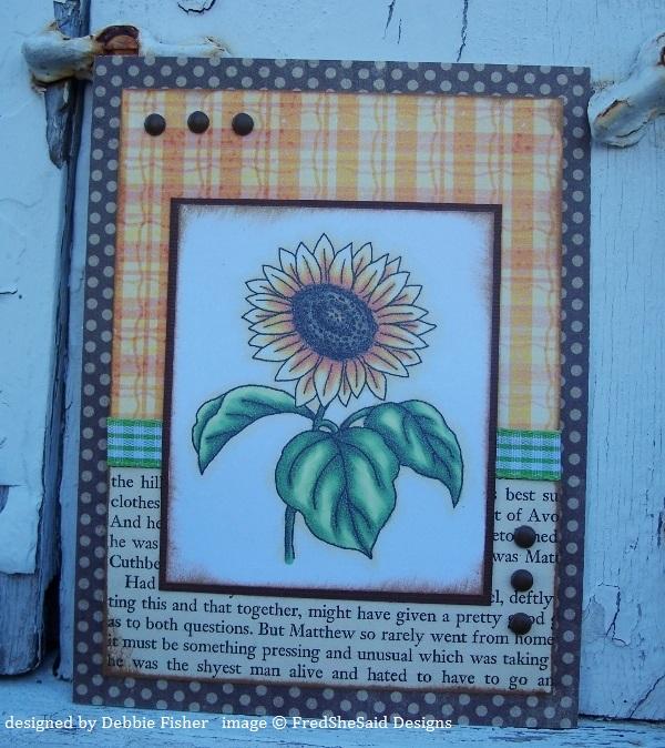http://1.bp.blogspot.com/-NwhdO0nfKSQ/Tn-yJO9invI/AAAAAAAAFWc/o4EtvmWP7rk/s1600/Fall+Daisy.jpg