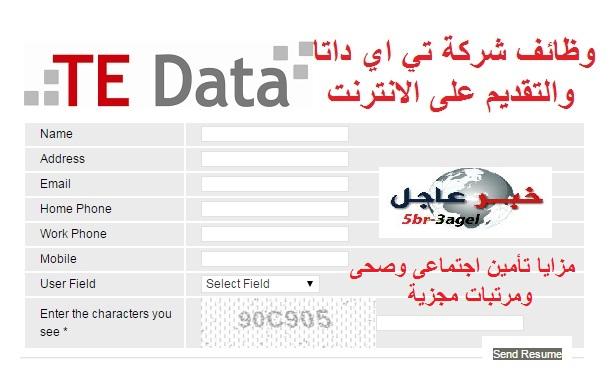 """تعلن شركة """" تي اي داتا TE Data """" عن وظائف لفروعها بالمحافظات والتقديم على الانترنت"""