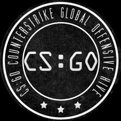 Cs go release date