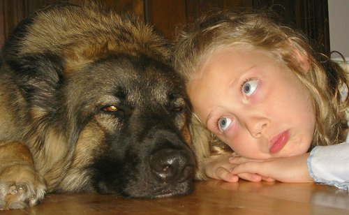 Cute Pictures of Kids and Pets