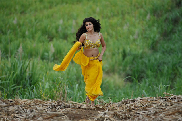 tapsee new spicy saree in mogudu photo gallery