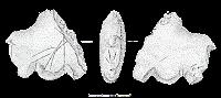 Figurină din Paleolitic