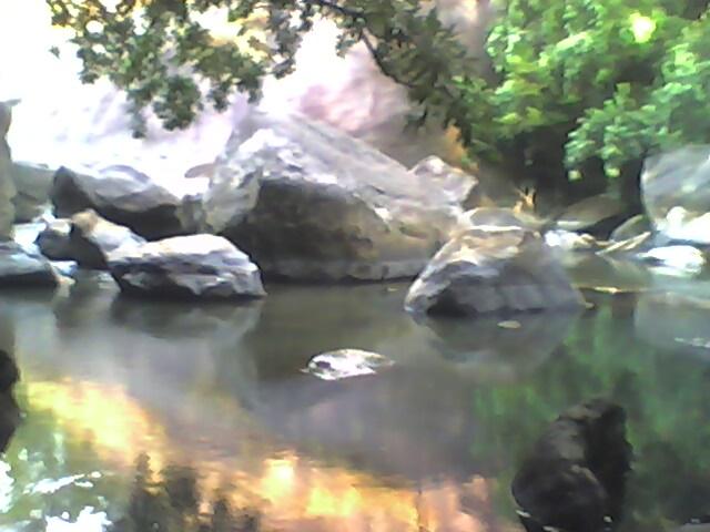 thommankuthu waterfalls and eco tourism kerala