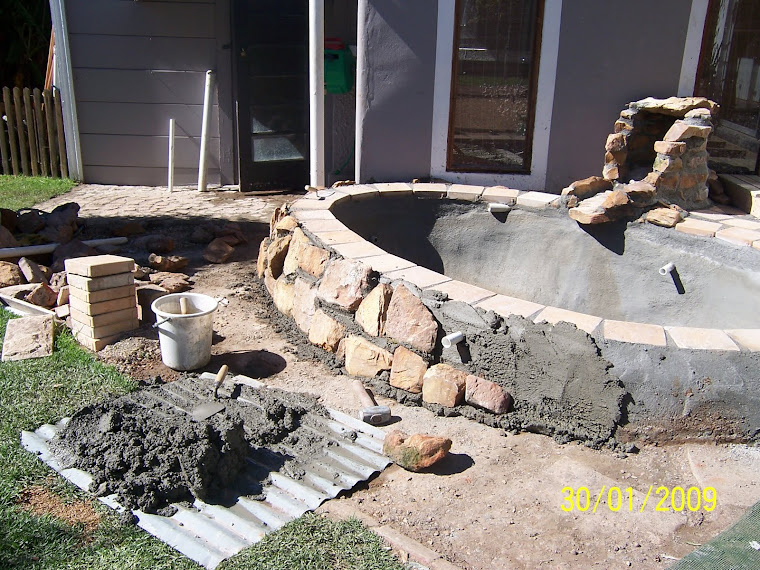 Diy Andr Where To Start By Diy Building A Koi Dam