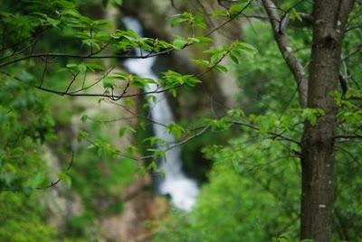 Villayón, la cascada de Oneta desde el sendero