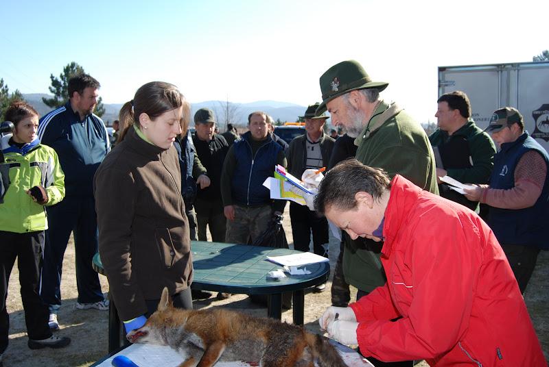 Entre ca as y escopetas febrero 2012 for Veterinario di punto di cabina