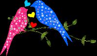 Pássaros love - Criação Blog PNG-Free
