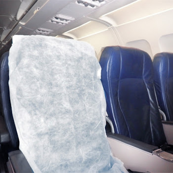 "<a href=""http://bugoffseatcovers.com/"">On the Plane </a>"