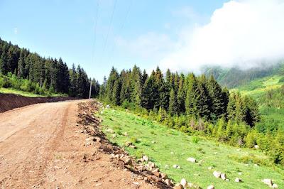 Yeşil Yol Projesi