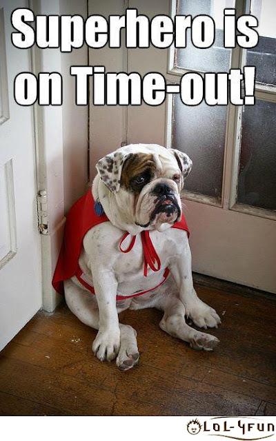Funny dogs ,Funny Superhero dog