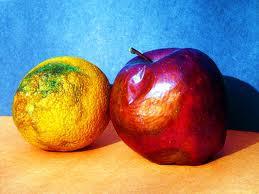 Σάπια πορτοκάλια μεταφέρθηκαν για να μοιραστούν σε μαθητές δημοτικού σχολείου