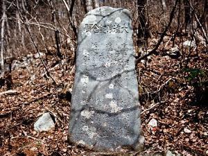 Batu Prasasti Kuno Tsunami