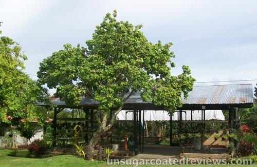 Partoza Durian Farm