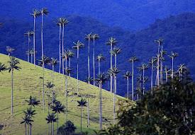 No a la megaminería en Colombia