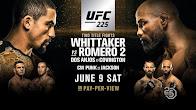UFC 225 Blog