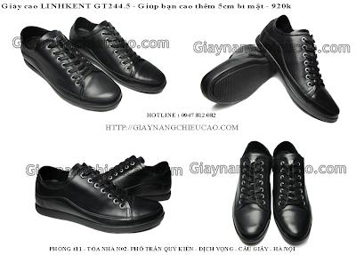 Giày nam tăng chiều cao GT244. 5