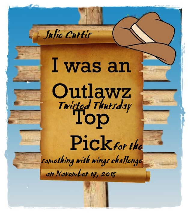 Outlawz Top Pick Winner
