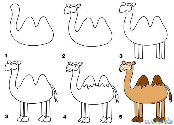 Drawing Simple Animal Camel pics