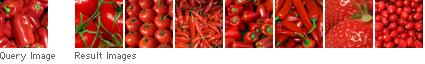 Cara Menerapkan SEO Untuk Optimasi Gambar Pada Blog 5 Cara Menerapkan SEO Untuk Optimasi Gambar Pada Blog