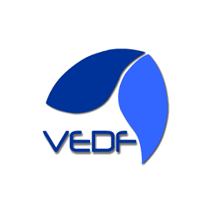WWW.VEDF.COM.BR