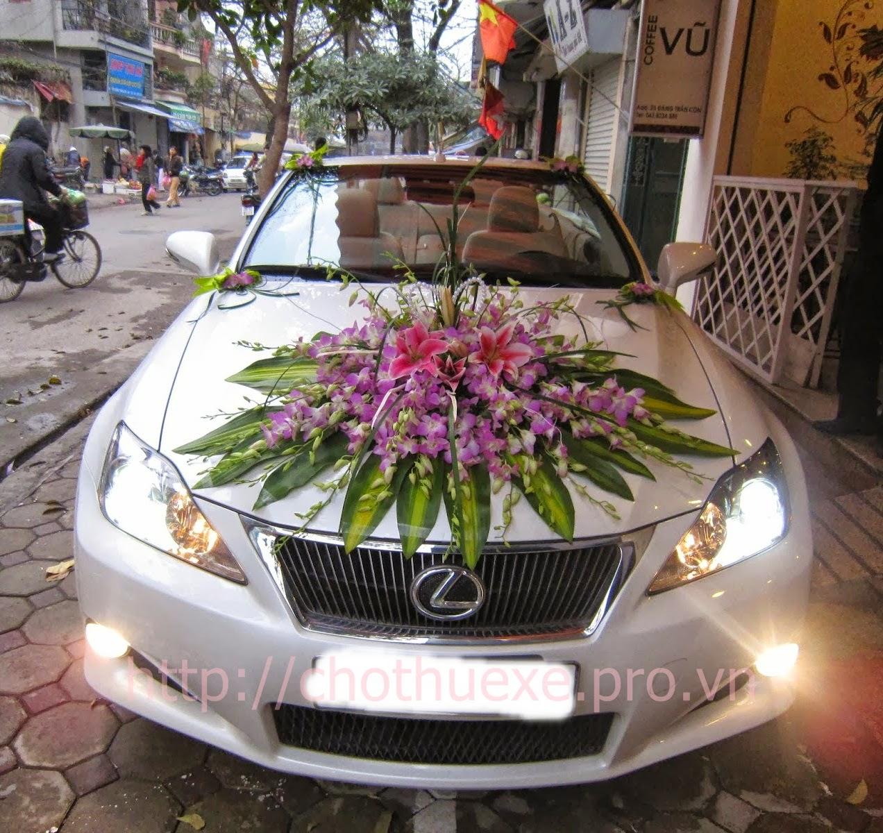 Cho thuê xe cưới Lexus IS 250C xe cưới mui trần đời mới tại Hà Nội 1