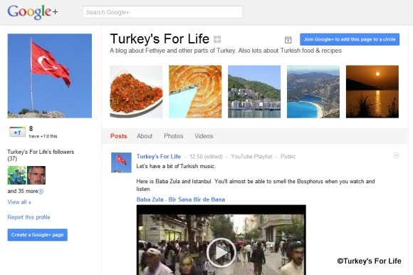 Turkey's For Life on Google Plus