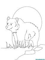 Mewarnai Gambar Beruang Madu